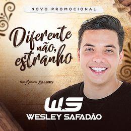 Capa: Wesley Safadão - Diferente Não, Estranho