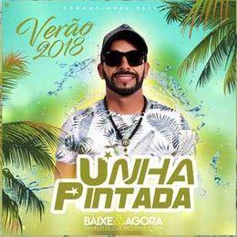 Capa: Banda Unha Pintada - Verão 2018