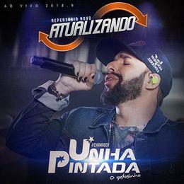 Capa: Banda Unha Pintada - Atualizando 2K18