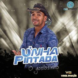 Capa: Banda Unha Pintada - Promocional Abril 2016