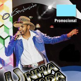 Capa: Banda Unha Pintada - Promocional 2015
