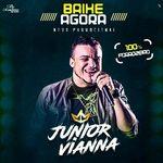 Capa: Junior Vianna - 100% Forrozeiro