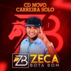 Zeca Bota Bom