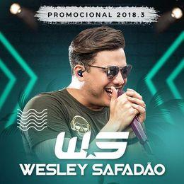 Capa: Wesley Safadão - Promocional 2018.3