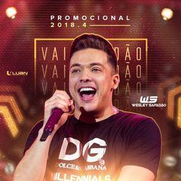 Capa: Wesley Safadão - Promocional 2018.4