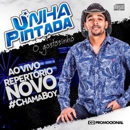 Capa: Banda Unha Pintada - Promocional Agosto 2016