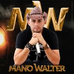 Capa: Mano Walter - Promocional Junho 2015